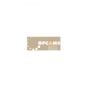 OPCAMS – OPCA des services